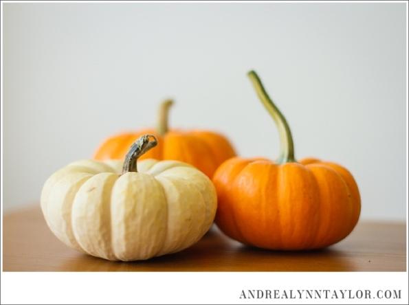 pumpkinbreakfastcake_0001